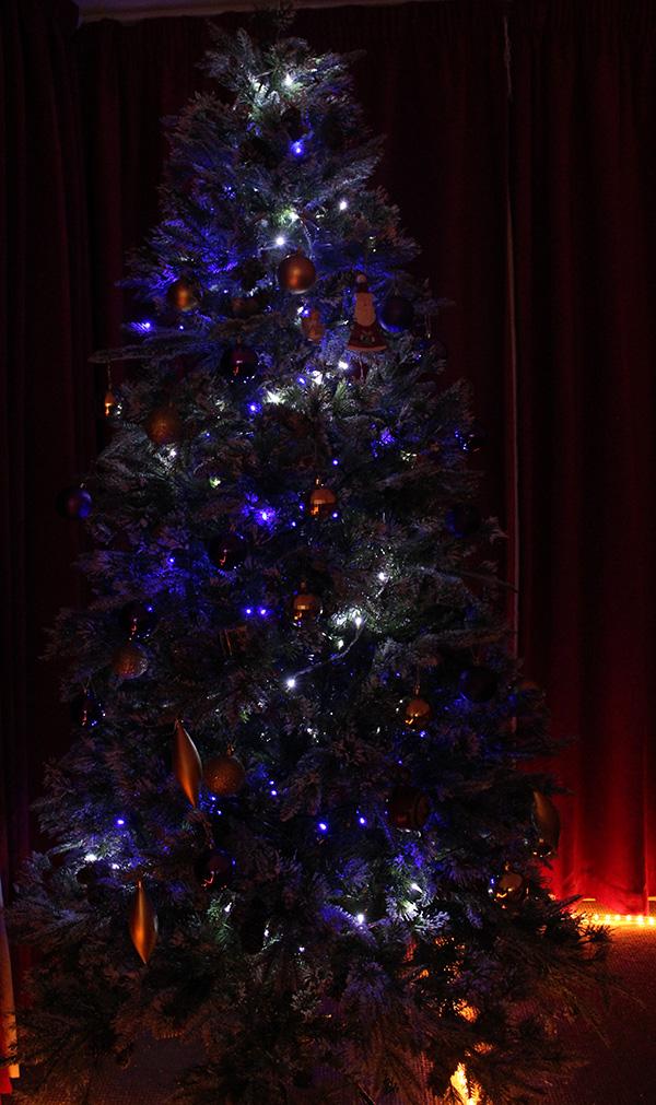 photos of my Christmas tree