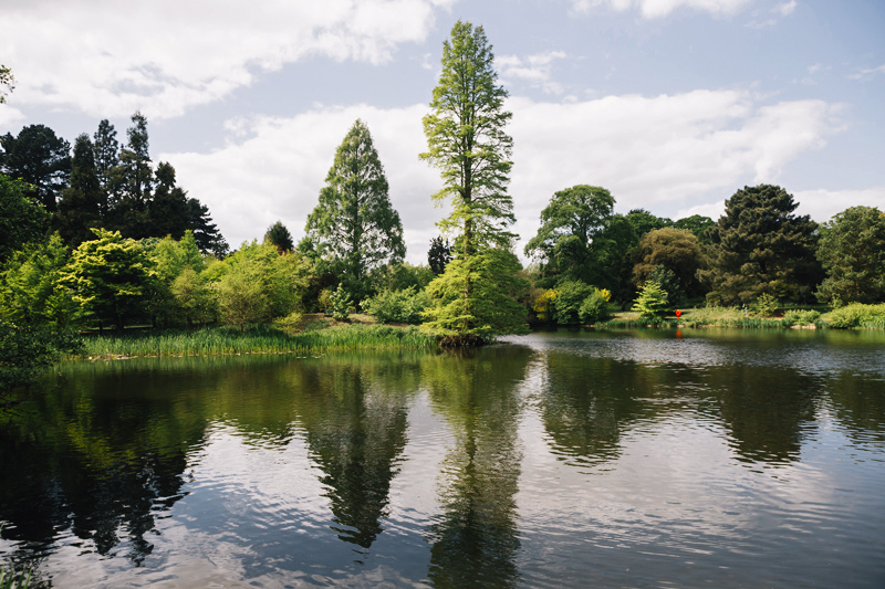 the romance of Kew Gardens