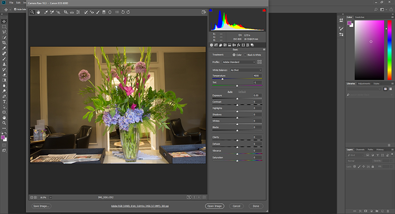 Photoshop Camera Raw Filter