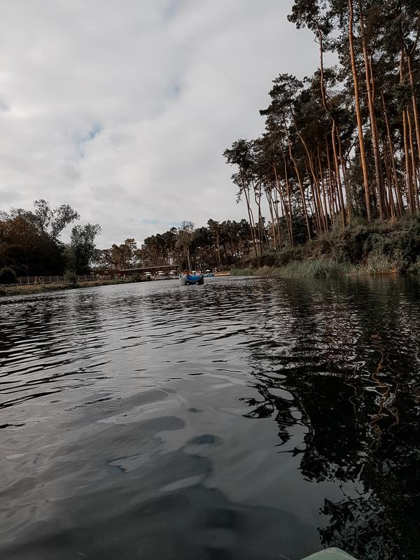 Rowing myself back to blogging